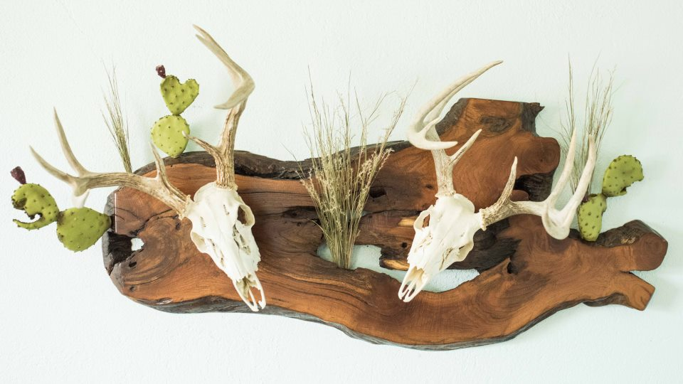 Taxidermy Plaques - Mount your deer, turkey, or antlers today.